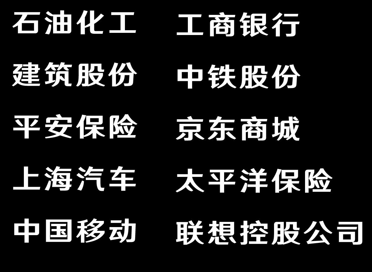 上海大众BB